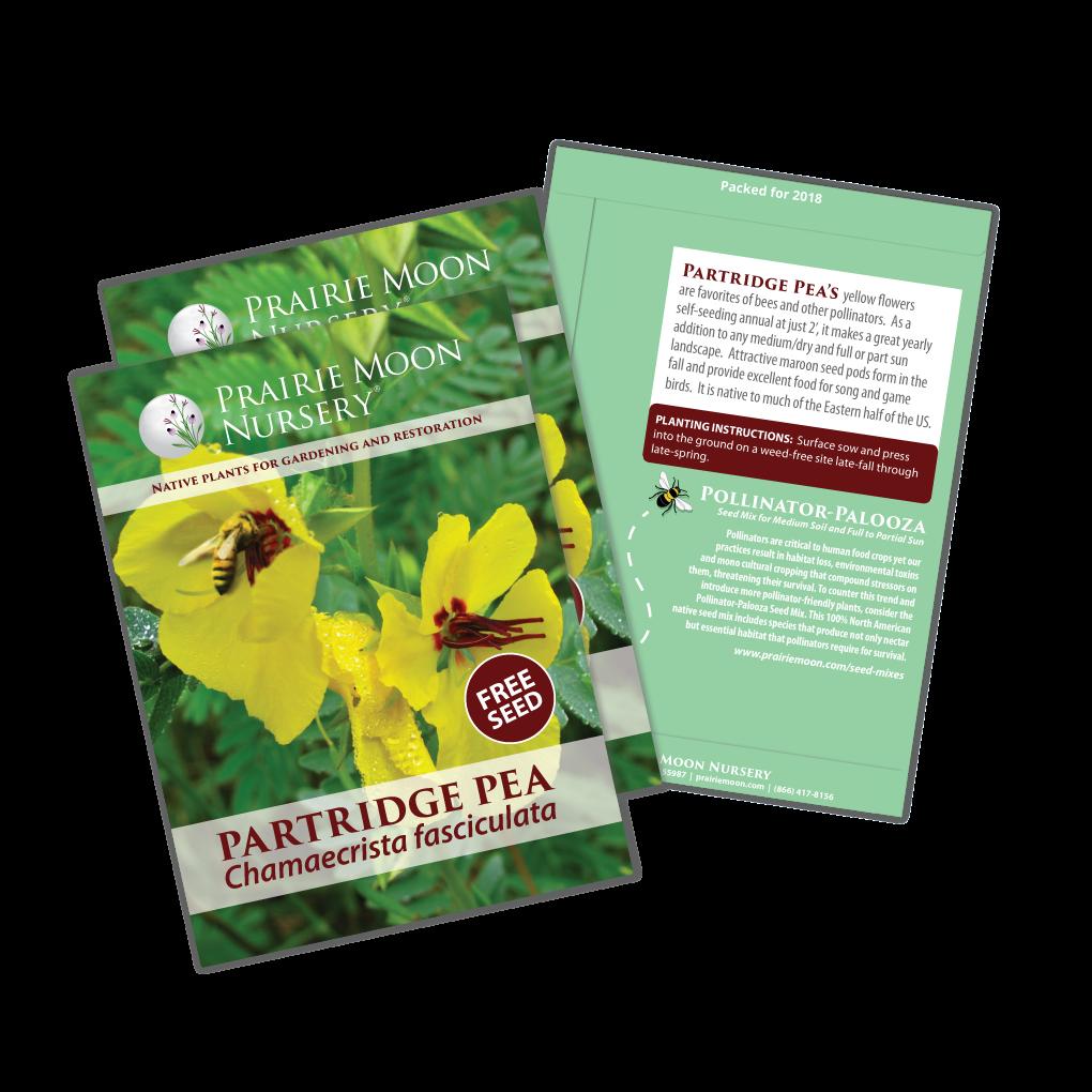 Free Partridge Pea Seed Packet