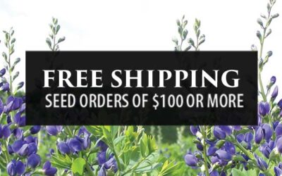 We are excited to announce free shipping