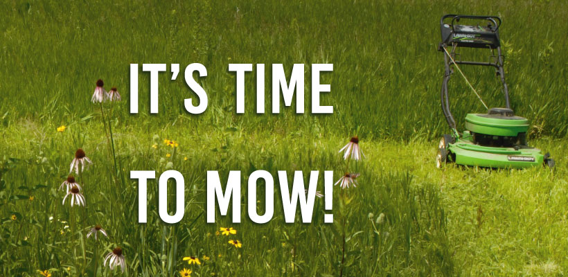 Are You Mowing Your 1st Year Prairie?