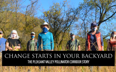 CHANGE STARTS IN YOUR BACKYARD: The Pleasant Valley Pollinator Corridor Story